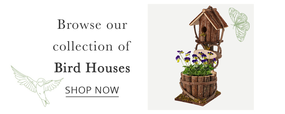 Bird-House-Page