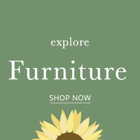 Clearance Furniture