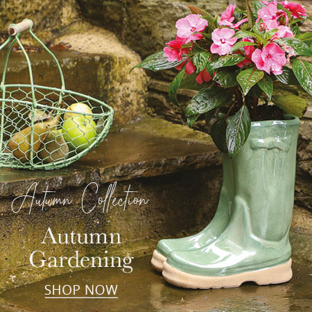 Autumn Winter Garden