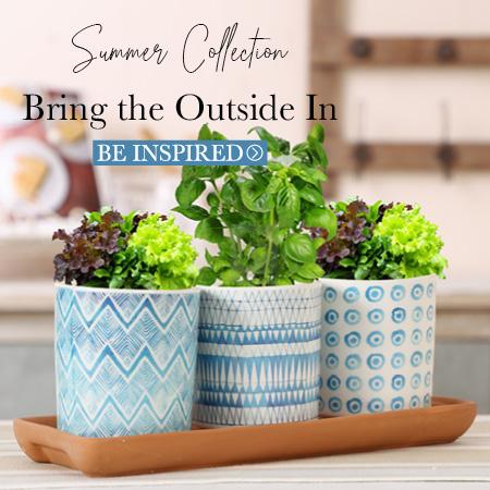 Indoor Kitchen Garden