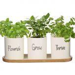 Grow, Thrive & Flourish Ceramic Herb Pots