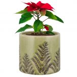 Green Fern Ceramic Planter