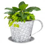 Mug Plant Pot