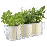 Three Indoor Planters Inside of a Handwoven Caged Holder