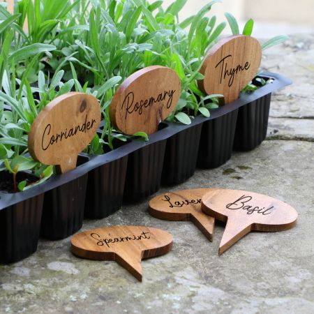 Set of 6 Wooden Write Your Own Plant Markers