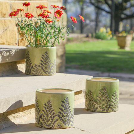 Set of 3 Fern Green Fern Ceramic Planters