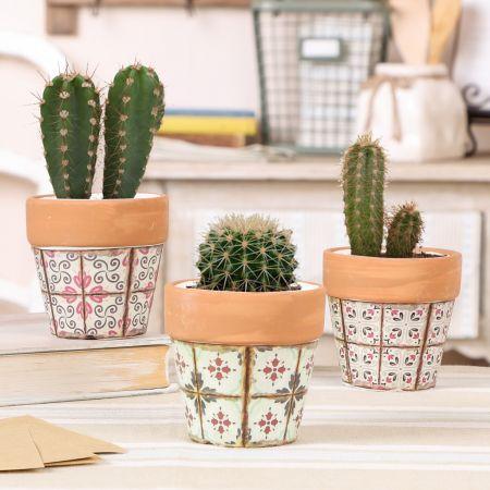 Set of 3 Miniature Succulent Pots