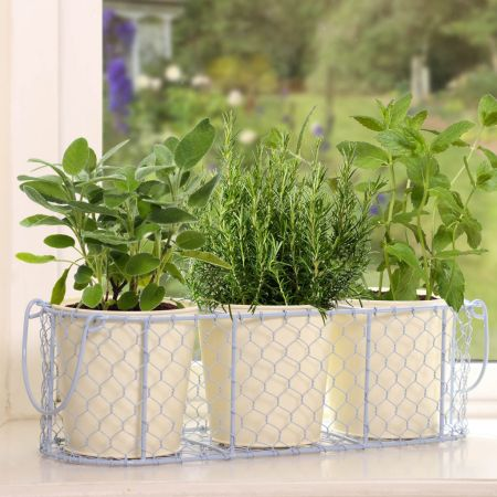 Pastel Blue and Country Cream Windowsill Herb Planters