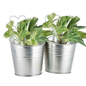 Double Vintage Metal Wall Hanging Planter