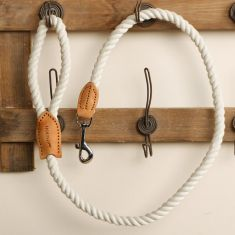 White Braided and Leather Dog Lead