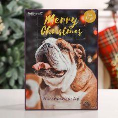 Dog Christmas Countdown Advent Calendar