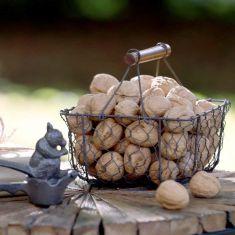 Squirrel Nutcracker and Nut Basket Gift Set