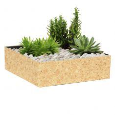 Square Desktop Cork Planter
