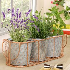 Set of 3 Vintage Zinc Plant Pots with Antique Copper Wire Basket
