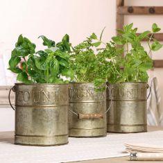 Set of 3 Zinc Kitchen Herb Planters