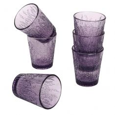 Set of 6 Summer Lavender Tumblers