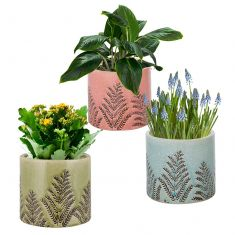 Set of 3 Ceramic Fern Crackle Glaze Planters