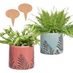His and Hers Personalised Plant Pots Gift Set