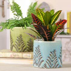 Set of 2 Ceramic Fern House Plant Pots