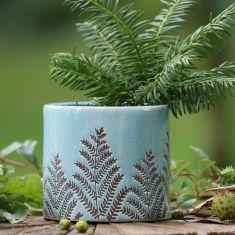 Sky Blue Fern Ceramic Planter