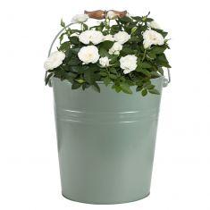 Rustic Green Flower Pot Bucket Planter