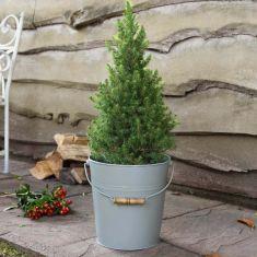 Sage Green Large Christmas Tree Bucket Planter