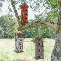 Bird Houses and Feeding