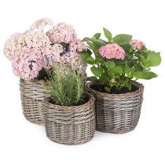 Set of 2 Round Wicker Planters