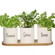 Grow, Thrive & Flourish Ceramic Herb Pots