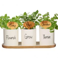 Personalised Ceramic Herb Pots Gift Set