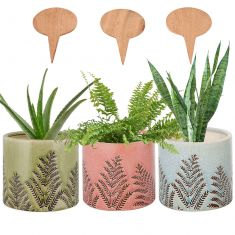 Set of 3 Personalised Ceramic Planters Gift Set