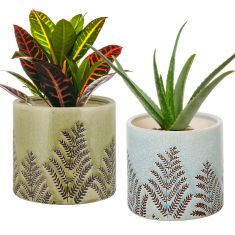 Set of 2 Ceramic Fern House Plant Pots