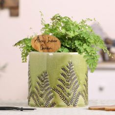 Fern Green Planter With Personalised Plant Marker