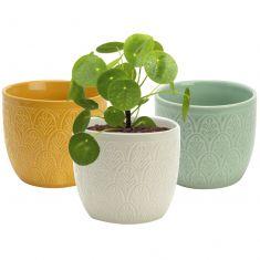 Set of 3 Botanical Embossed Flower Pots