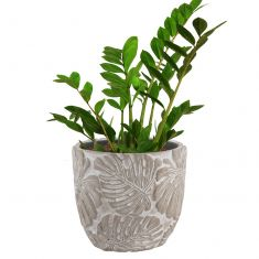 Concrete Fern Leaf Botanical Plant Pot