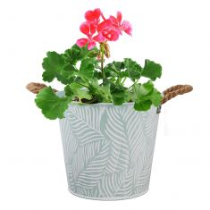 Mint Fern Summer Planter with Rope Handles