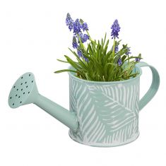 Blue Embossed Watering Can Planter