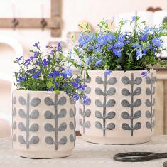 Botanical Leaf Plant Pots