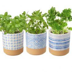 Set of 3 Round Ceramic Windowsill Herb Pots