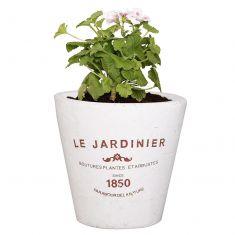 Vintage Le Jardinier Flower Pot