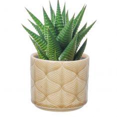 Beige Leaf Cacti Planter