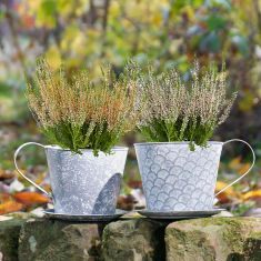 Metal Tea Cup and Saucer Planters