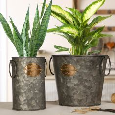 Zinc English Country Planters