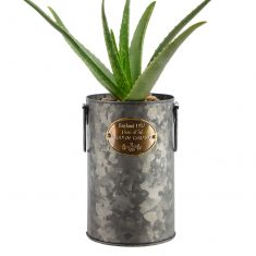 Aged Zinc Tall English Country Planter Bucket