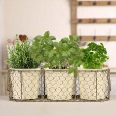 French Grey and Country Cream Windowsill Herb Planters