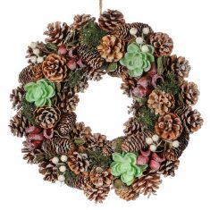 Sparkling Succulent Natural Spring Door Wreath