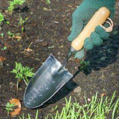 Pinewood Handle Garden Trowel