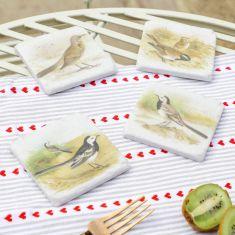 Set of 4 Watercolour Wild Bird Coasters