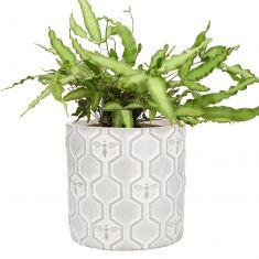 Honey Bee Flower Pot Planter