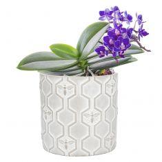 Honeybee Flower Pot